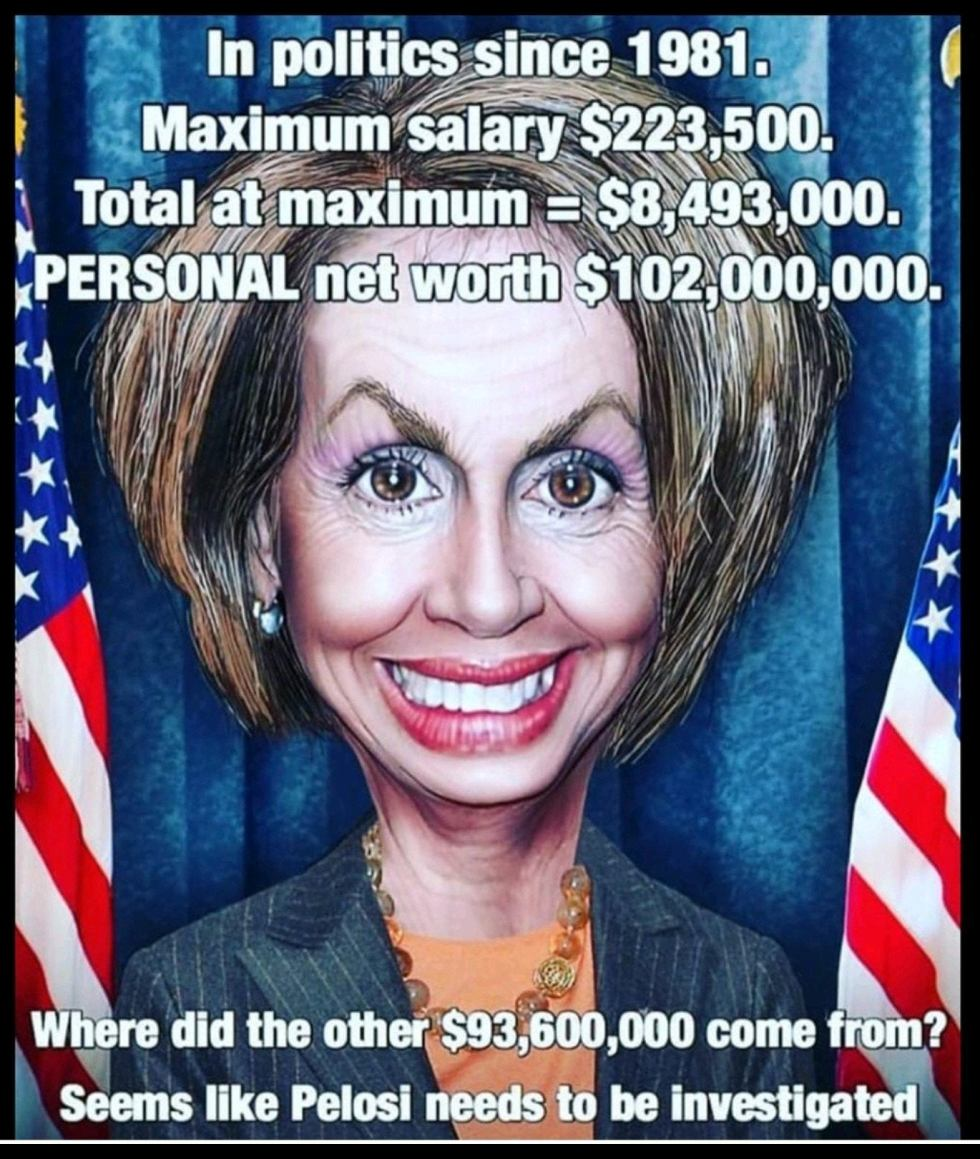 pelosi audit