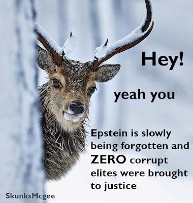 epstein arrest