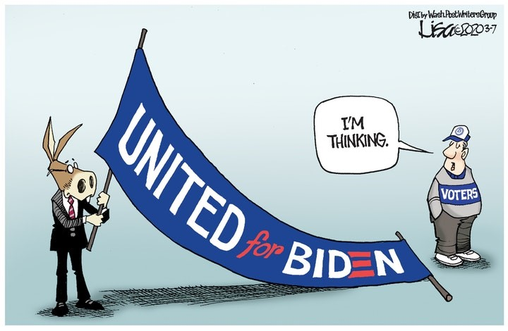 joe biden democrat voter
