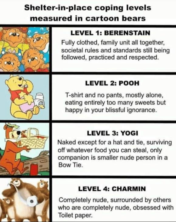 bear levels