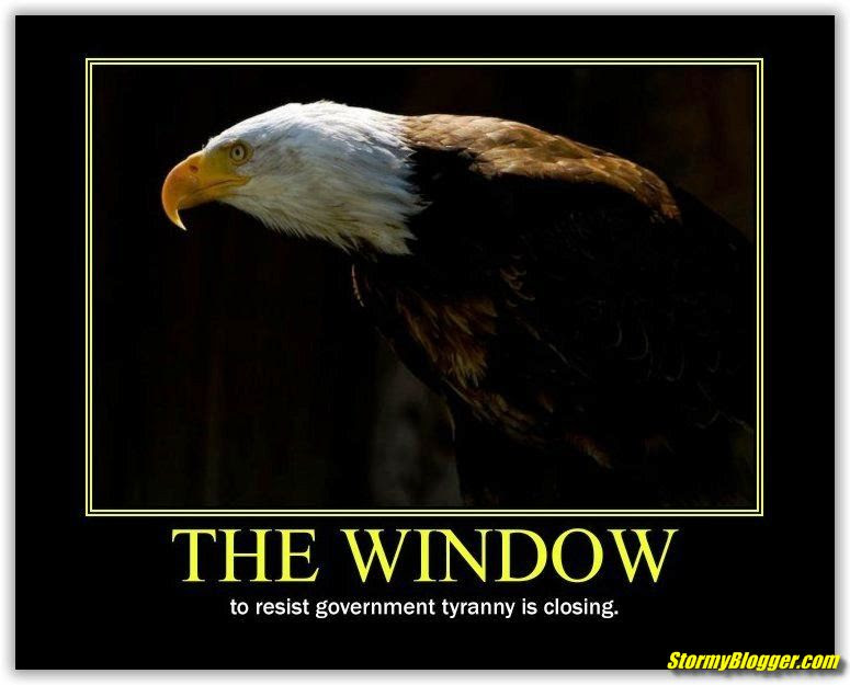 eagle window