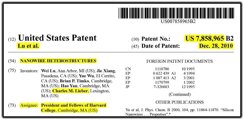 nanowire patent