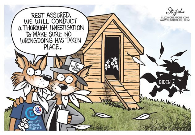 democrat investigation