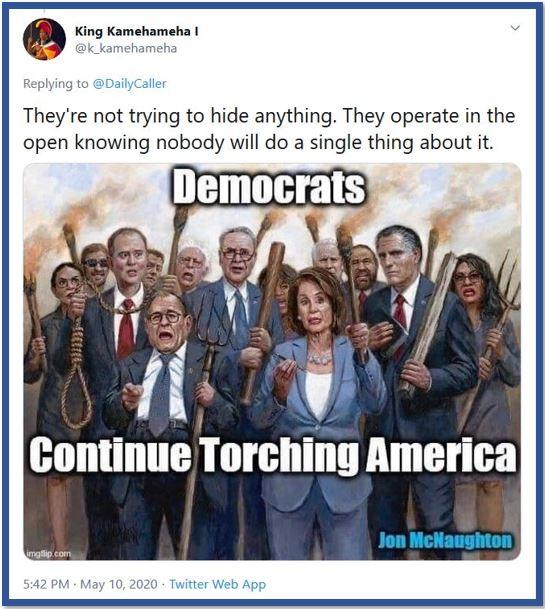 democrats torch america