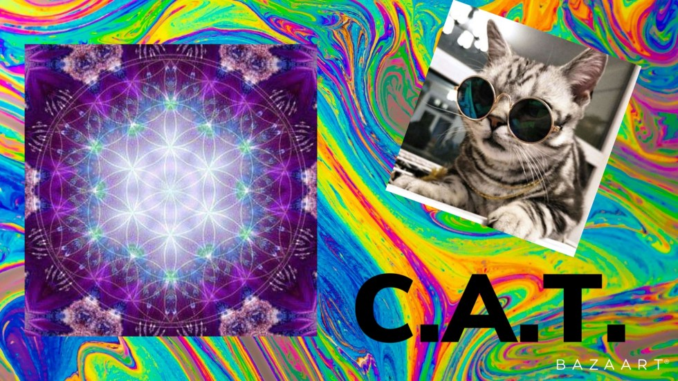 far out cat