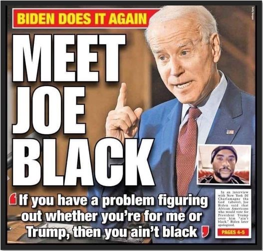 meet joe biden black v2