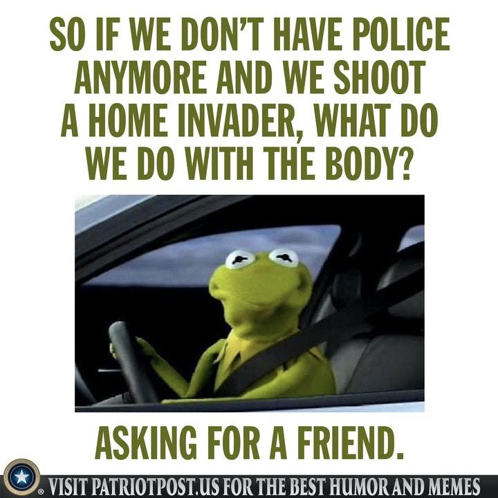 defund police body