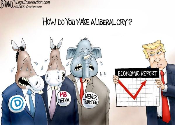 democrat liberal cry economy