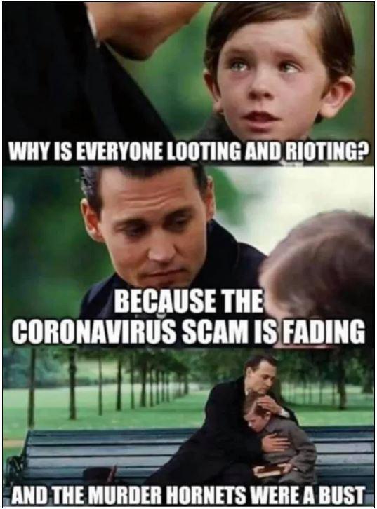 looting rioting murder hornets