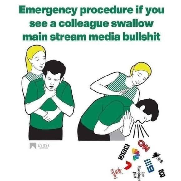 media fake news