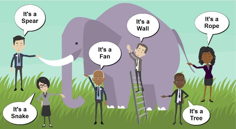 elephant perspective
