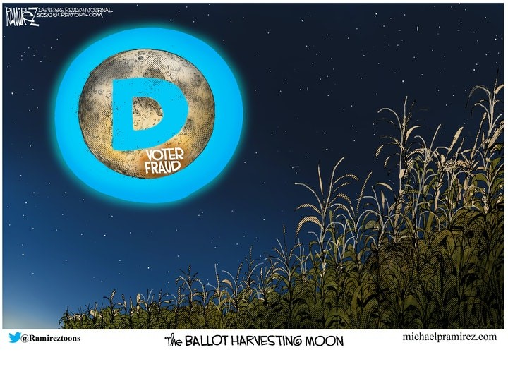ballot harvest moon