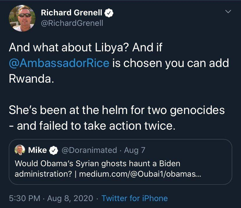 grenell susan rice