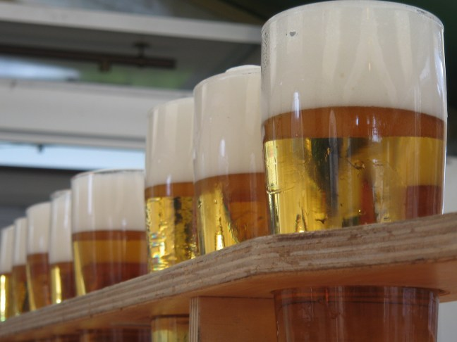Glasses of beer waiting to be tasted.