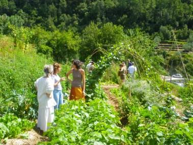 aime-jardinage02-jardins-pluriel-laurac