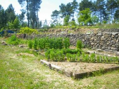 aime-jardinage07-jardins-pluriel-laurac