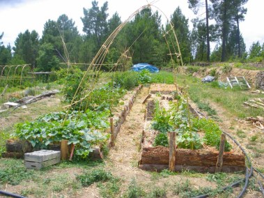aime-jardinage14-jardins-pluriel-laurac