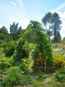aime-jardinage17-jardins-pluriel-laurac