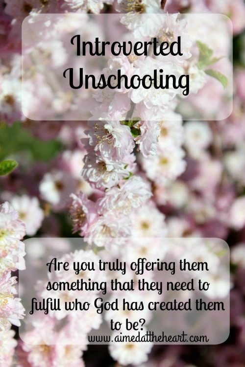 Introverted Unschooling
