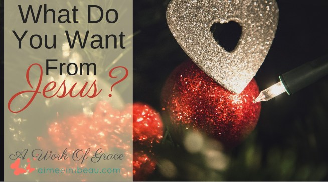 Have you ever thought of asking Jesus for a Christmas gift? Does that sound audacious to you? What if I told you He wants us to ask Him for gift? What Do You Want From Jesus For Christmas?
