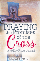 AJ-Praying-the-Promises-of-the-Cross-a-40-Day-Prayer-Journal-pin-333x500