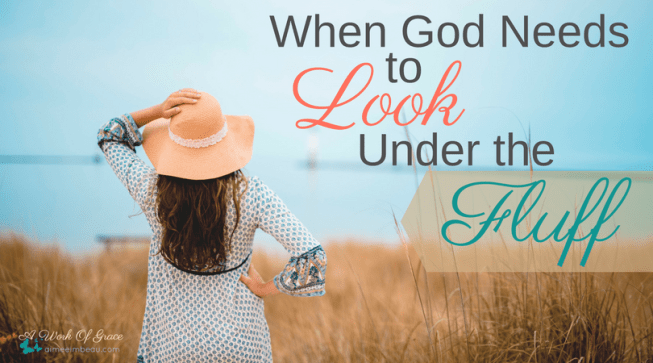 If we really want change in our lives. If we truly wish to become the amazing women God desires us to be, then we need to get to the heart. We must rid ourselves of the fluff and allow God to heal the broken. When God Needs to Look Under the Fluff.