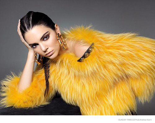 Kendall Jenner Cornrows Appropriation