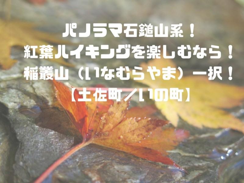 パノラマ石鎚山系!紅葉ハイキングを楽しむなら!稲叢山(いなむらやま)一択!【土佐町/いの町】