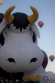 Interesting shaped hot air balloon
