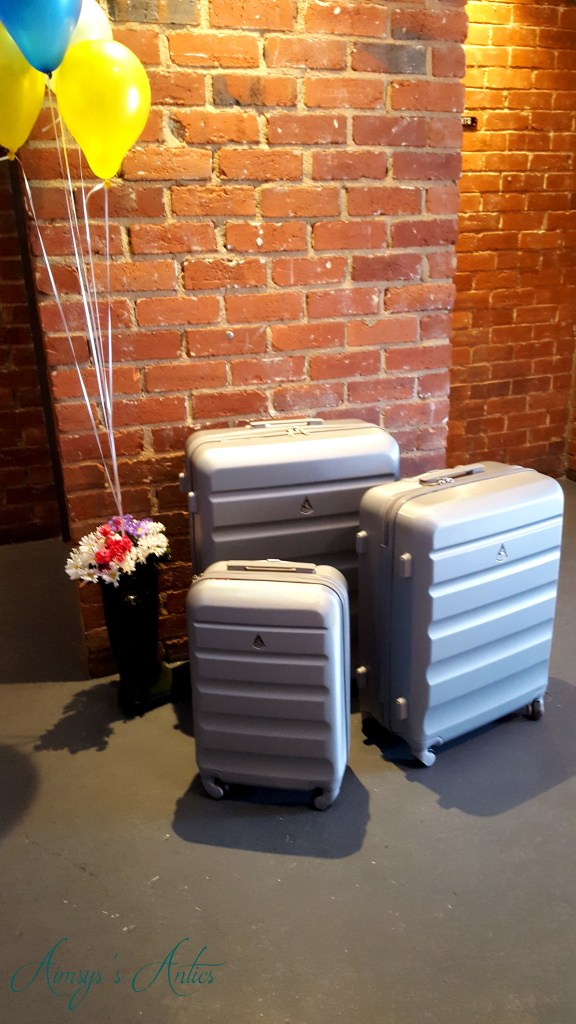 Image of Travel Luggage Cabin Bags at Ice lolly's blog at the beach event