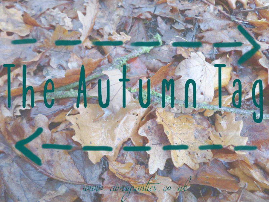 "Image of Autumn leaves with a branch and the text overlay ""The Autumn Tag"" and ""www.aimsysantics.co.uk"""