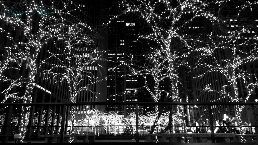 Black and white image of NYC at Christmas time, with fairy lights covering several trees.