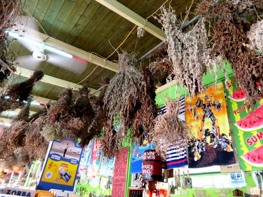 Dried herbs hanging from a ceiling in a shop