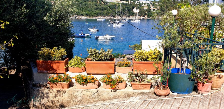 Many plants in various shape and size pots with Kalami bay in the background