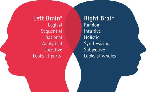 image_red_blue_descriptions of brain functionality