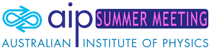 AIP Summer Meeting 2021