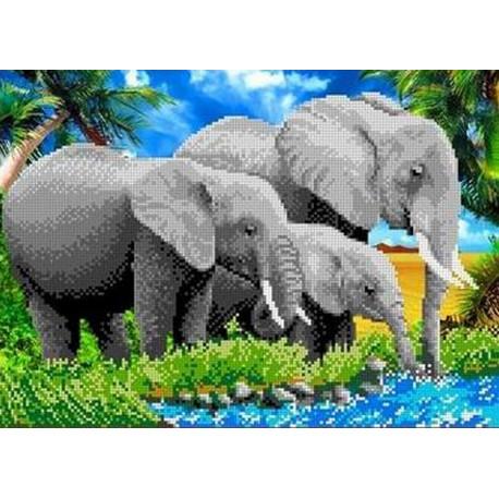 ТКБЖ 3007 Слоны Канва с рисунком для вышивки бисером в ...