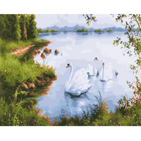 Белые лебеди Раскраска картина по номерам на холсте ZX ...