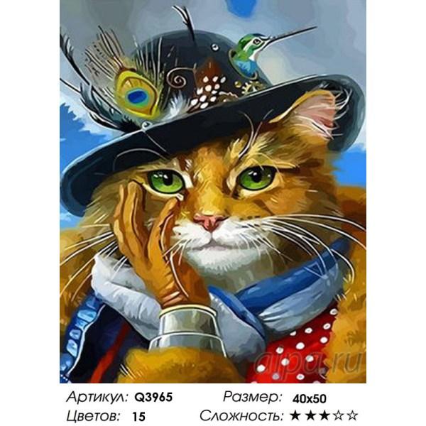 Q3965 Кот в шляпе с птичкой колибри Раскраска картина по ...