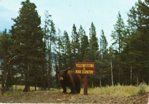 Yellowstone Park and a Super Volcano