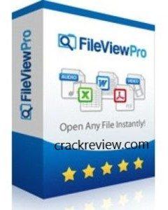 1615098803_922_fileviewpro-crack-297x300-1142053