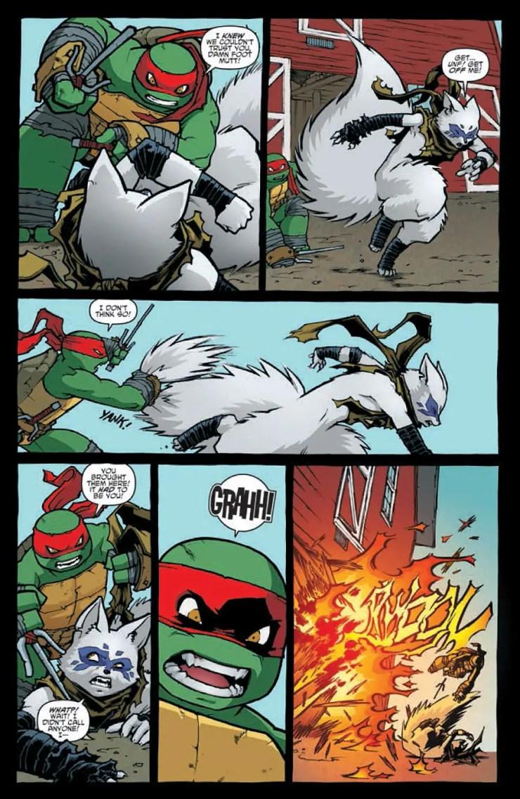 teenage-mutant-ninja-turtles-32-raph