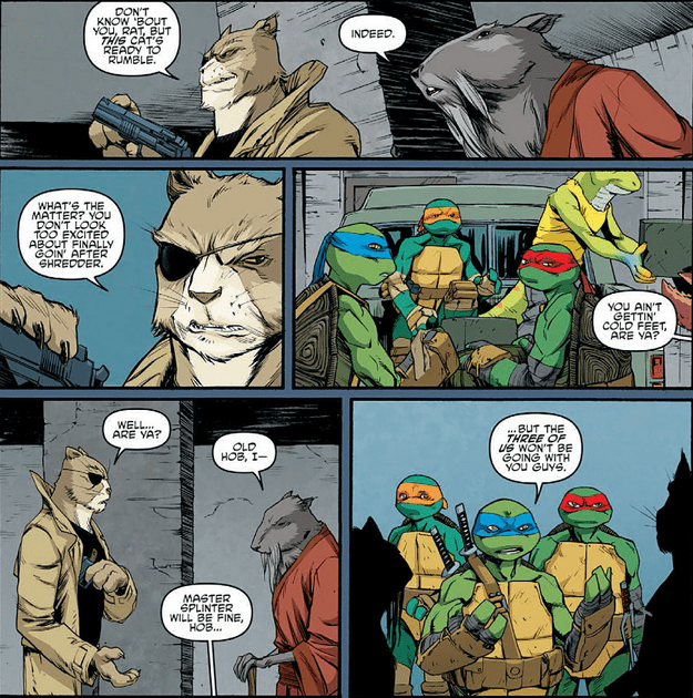teenage-mutant-ninja-turtles-42-splinter-hobs