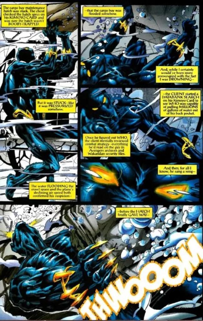 black-panther-airplane-hatch