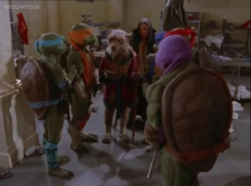ninja-turtles-the-next-mutation-splinter-turtles