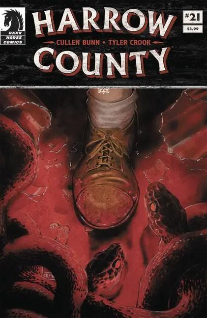 harrowcounty21_cover