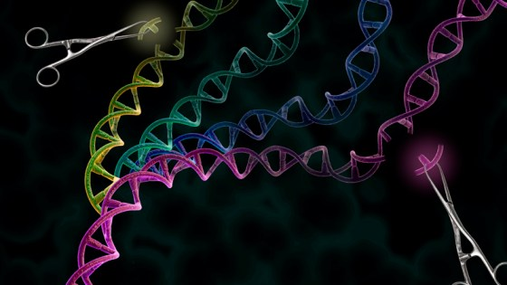 Is CRISPR the cure-all some think it is?