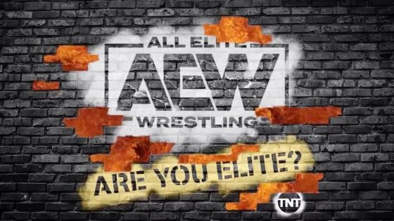 AEW will have a panel at New York Comic Con 2019