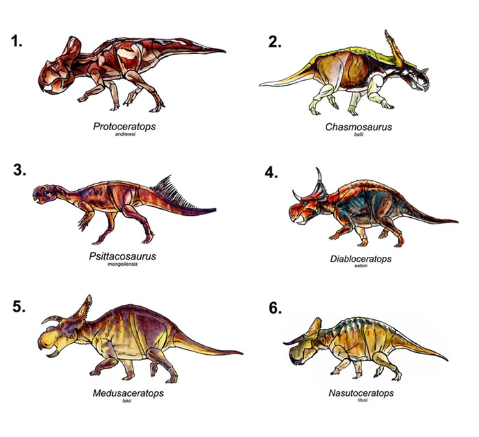 Beasts of the Mesozoic: All stretch goal Ceratopsians revealed!