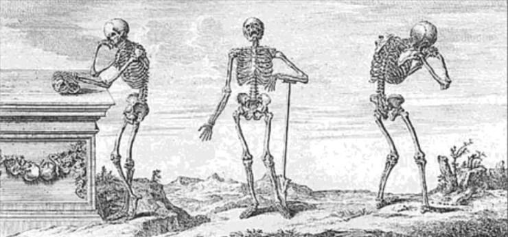 'Skeleton Keys: The Secret Life of Bones' -- book review